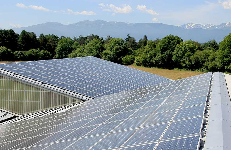 photovoltaïque pour les professionnels